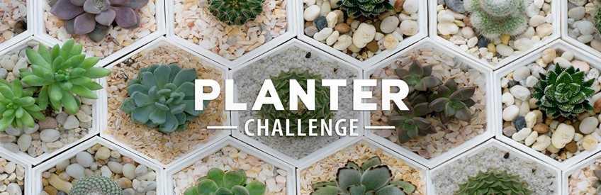 chậu nhựa trồng cây composite sân vườn thông minh